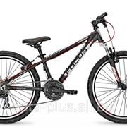 """Подростковый велосипед Focus Raven Rookie 24"""" фото"""