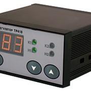 Терморегулятор двухканальный ТР410 фото