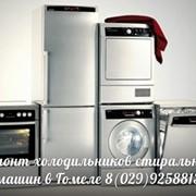 Ремонт холодильников в Гомеле фото