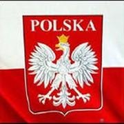 Визы в Польшу фото