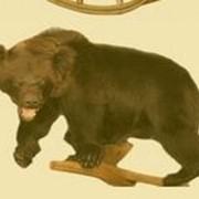 Чучело медведя фото
