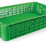 Ящик для перевозки птицы H25 фото