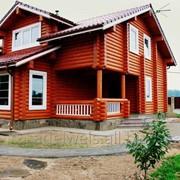 Дом из оцилиндрованного бревна Елена фото