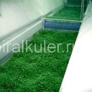 Глубокая заморозка зеленого горошка, картофеля фри фото