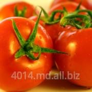 Семена томатов в ассортименте фото