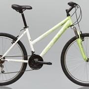 Велосипед LTD VENTURA 10 (Lady) фото