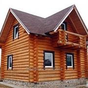 Постройка дома из рубленного или оцилиндрованного бревна фото