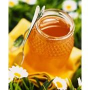 Мёд из лекарственных трав (Расторопша) фото