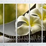 Модульна картина на полотні Біла квітка в чаші код КМ100150(150)-101 фото