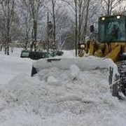 Услуги по вывозе и уборке снега фото