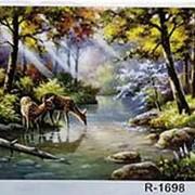 Картина по номерам 40х50 олень в лесу арт R 1698 фото