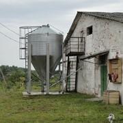 Ферма животноводческая оборудованная фото