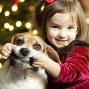 Зоопсихолог - учимся понимать свою собаку и смотреть на мир её глазами! фото