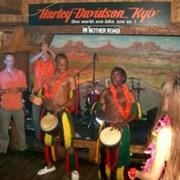 Организация гавайской вечеринки фото