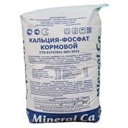 Mineral Ca-фосфат  фото
