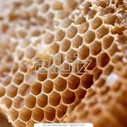 Продукты и напитки. Сахар, соль, мед. Продукция пчеловодства. Прополис. фото