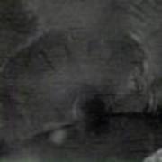 Телеинспекция фото