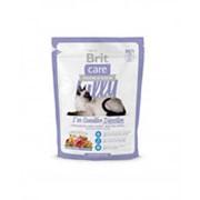 Корм для кошек с чувствительным пищеварением BRIT Care с ягненком и лососем, 400г фото