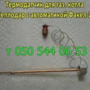 Термодатчикдля котла с автоматикой Факел-2 фото