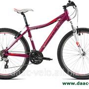 Стоимость велосипедов, Кишинев фото