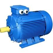 Электродвигатель общепромышленный, 3000об/м, А225 М2УЗ IM1081 220/380В IP54 фото