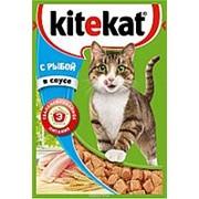 Kitekat 85г пауч Влажный корм для взрослых кошек Рыба (соус) фото