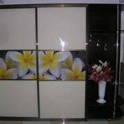 Шкаф-купе с фотопечатью (бело-желтые цветы) фото