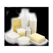 Молоко и молочная продукция фото