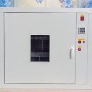 Инкубационно-выводной инкубатор для любой домашней птицы фото
