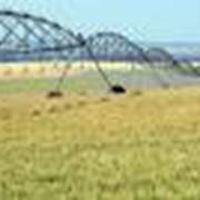 Осушительная гидромелиорация земель фото