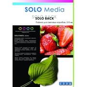 Пленка Solo Back 210g для световых коробов фото