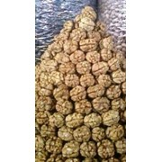 Грецкий орех экспорт фото