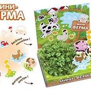 Мини-ферма Живая открытка Happy Plant наборы для выращивания фото