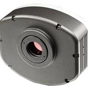 Камера цифровая для микроскопии BUC 4-500C, охлаждаемое исполнение фото
