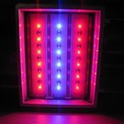 ФИТО светильник светодиодный (для растений) ССТ - 18 БИО фото