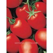 Семена томата Яки F1 (крупная сливка) 1000с фото