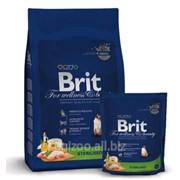 Сухой корм для кошек Brit Premium Cat Sterilized 0,8 кг фото