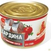 Консервы Cардина атлантическая в томатном соусе фото