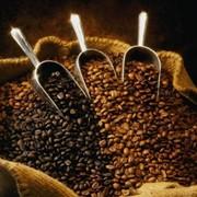 Кофе. фото