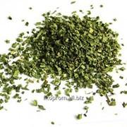 Лук зеленый резаный фото
