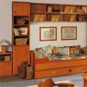 Корпусная мебель под заказ в Харькове фото