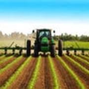 Средства защиты растений химические фото