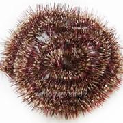Мишура еловая золотисто-вишневая витая 2м GWS750223-01 фото