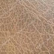Комплект для обивки дверей гладкий (кожвинил 1м х 2, 05 м, утеплитель2, гвозди) Темно коричневый №716210 фото