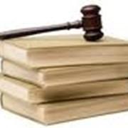 Представительство в хозяйственных судах, подготовка искового заявления, апелляционной, кассационной, надзорной жалоб, содействие исполнению решения суда, защита интересов должника, кредитора фото