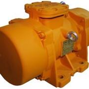 Электровибратор 2- полюсный ЭВВ-11-50 фото