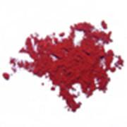 Конго красный фото