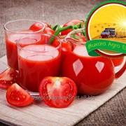 Пюре томатное фото