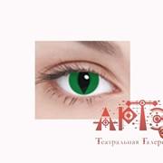 Линза кошачий глаз, зеленая фото