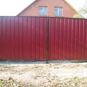 Ворота из профлиста фото